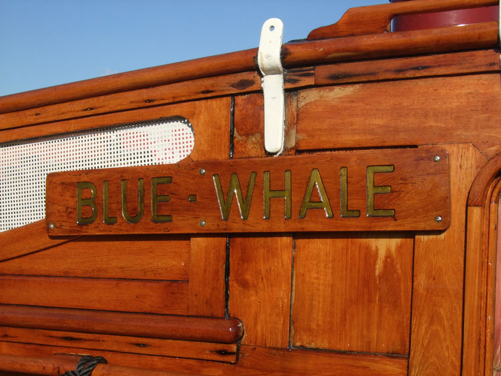 Blue Whale Canal Boat